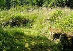 Steinreste des 1998 ausgegrabenen Zangentors