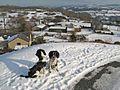 Llechwedd view - geograph.org.uk - 1654904.jpg