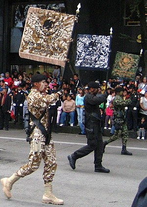 Mexican Navy - Mexican marines displaying three different camouflage patterns used by the Mexican marine corps.