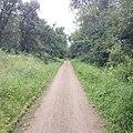 Luce Line Trail.jpg
