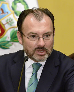 Luis Videgaray Caso Mexican politician
