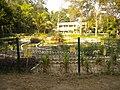 MEDICNAL PLANT GARDEN - panoramio.jpg