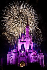 Magic Kingdom - The 'Big Bang' at Wishes - by hyku.jpg