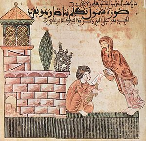 Moroccan literature - Illustration from the 14th century courtly romance  'Hadîth Bayâd wa Riyâd' (the story of Bayad and Riyad)