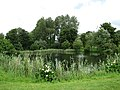 Mannington Hall - one of the lakes - geograph.org.uk - 878966.jpg