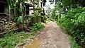 Manosapota Village Road - Simurali - Nadia 20170730121506.jpg