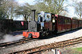 Markeaton Lady, Light Railway Locomotive.jpg