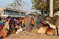 Market in Adalaj 03.jpg
