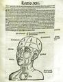 Matija Hvale - Commentarii in parvulum philosophiae naturalis.png