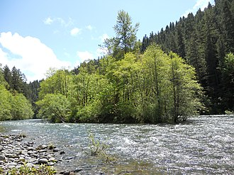 McKenzie River (Oregon) - An island in the upper McKenzie