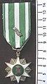 Medal, campaign (AM 2000.26.29-11).jpg