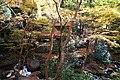 Meiji no Mori Minoh Quasi-National Park Minoh Osaka pref Japan18n.jpg