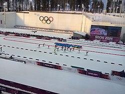 Биа�лон на зимни� Олимпий�ки� иг�а� 2014 � �ме�анная