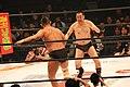 Minoru Suzuki vs RG.jpg