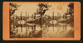 Mirror view, Lake Angeline, Cal. (no. 468), from Robert N. Dennis collection of stereoscopic views.png