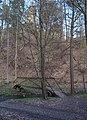 Mnichovka, lávka pod Hláskou (cyklotrasa 0020) (01).jpg
