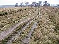 Moorland Track - geograph.org.uk - 336236.jpg