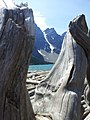 Moraine Lake and Logs - panoramio.jpg