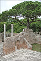 Mosaïque des thermes de Neptune (Ostia Antica) (5900771651).jpg