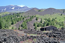 Mount Etna from the south 060313
