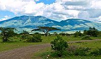 Mountains of the Serengeti.jpg