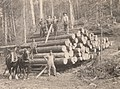 Moving logs, 1917 - 15870537340.jpg
