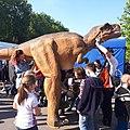 Muzeum Ewolucji dinozaur. Centrum Nauki Kopernik Piknik Naukowy 2019 14.jpg