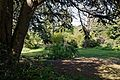 Myddelton House, Enfield, London - front lawn and garden 02.jpg