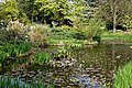 Myddelton House garden, Enfield, London ~ Lakeside near west terrace 02.jpg