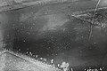 NIMH - 2155 010421 - Aerial photograph of Rhenen, Grebbelinie, The Netherlands.jpg