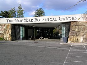 Image illustrative de l'article Jardin botanique de New York