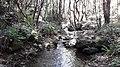 Nagarjun- shivapuri national park 20190316 133539.jpg