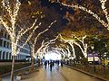 Nakanoshima Illuminathion Street in 201412.JPG