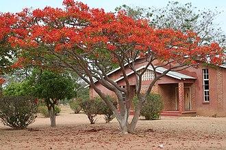 Namwianga Mission - Johnson Auditorium at Namwianga Mission