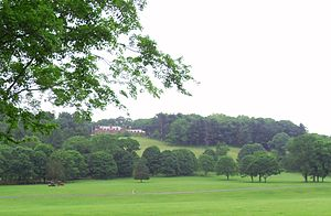 Natirar - Natirar Park and Mansion