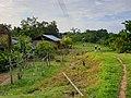 Native village.jpg