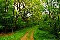 Naturschutzgebiet Gramstorfer Berge (5).JPG