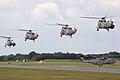 Navy 100 Formation - RIAT 2009 (3868170507).jpg