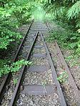 Nebenbahn Finnentrop-Wenholthausen (5777569869).jpg