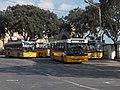 New Malta buses.jpg