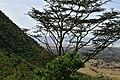Ngorongoro Crater walls (1) (28591279631).jpg