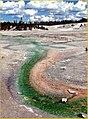 Norris Geyser Basin, Yellowstone NP (11856940746).jpg