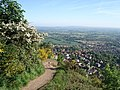 North side of Malvern - geograph.org.uk - 446347.jpg