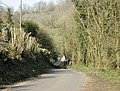 North to Stock Hill - geograph.org.uk - 1253862.jpg