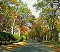 Oak Ridge Avenue, Summit NJ.jpg