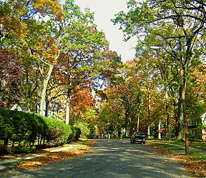 Quiet, leafy neighborhoods make Summit attractive to affluent home buyers.