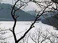 Obersee 14 db.jpg