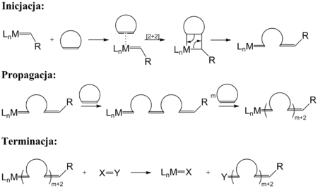 ring opening metathesis polymerisation romp Entropy-driven ring-opening metathesis polymerization (ed-romp) to give a  precisely  romp) is relatively rare,14–18 and polymers are favoured at high.