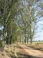 Okolice Latowicza - panoramio (2).jpg