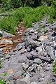 Old Kautz Creek riverbed 03.jpg